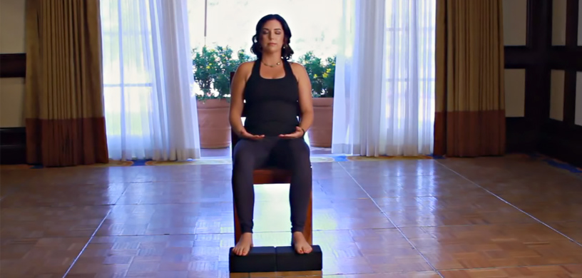Sama_Dog_Amanda_Ree_Chair_Yoga