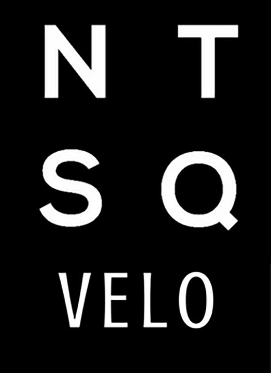 ntsqvelo_logo_final0117.png