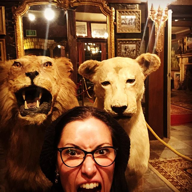 Lions and Tigers and Berets, Oh My!  What a way to kick off my stay than to visit the amazing #rutherglenhouse for the birthday of a dear friend.  Rev Rev, Captain!  #melbournelaneways #highlanderlane #happybirthday #dressedbytess #beretnice #taxidermy #lionaround