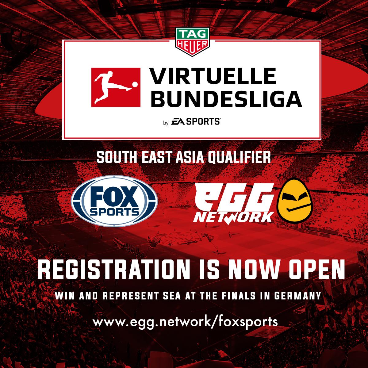 Virtuelle Bundesliga.jpg