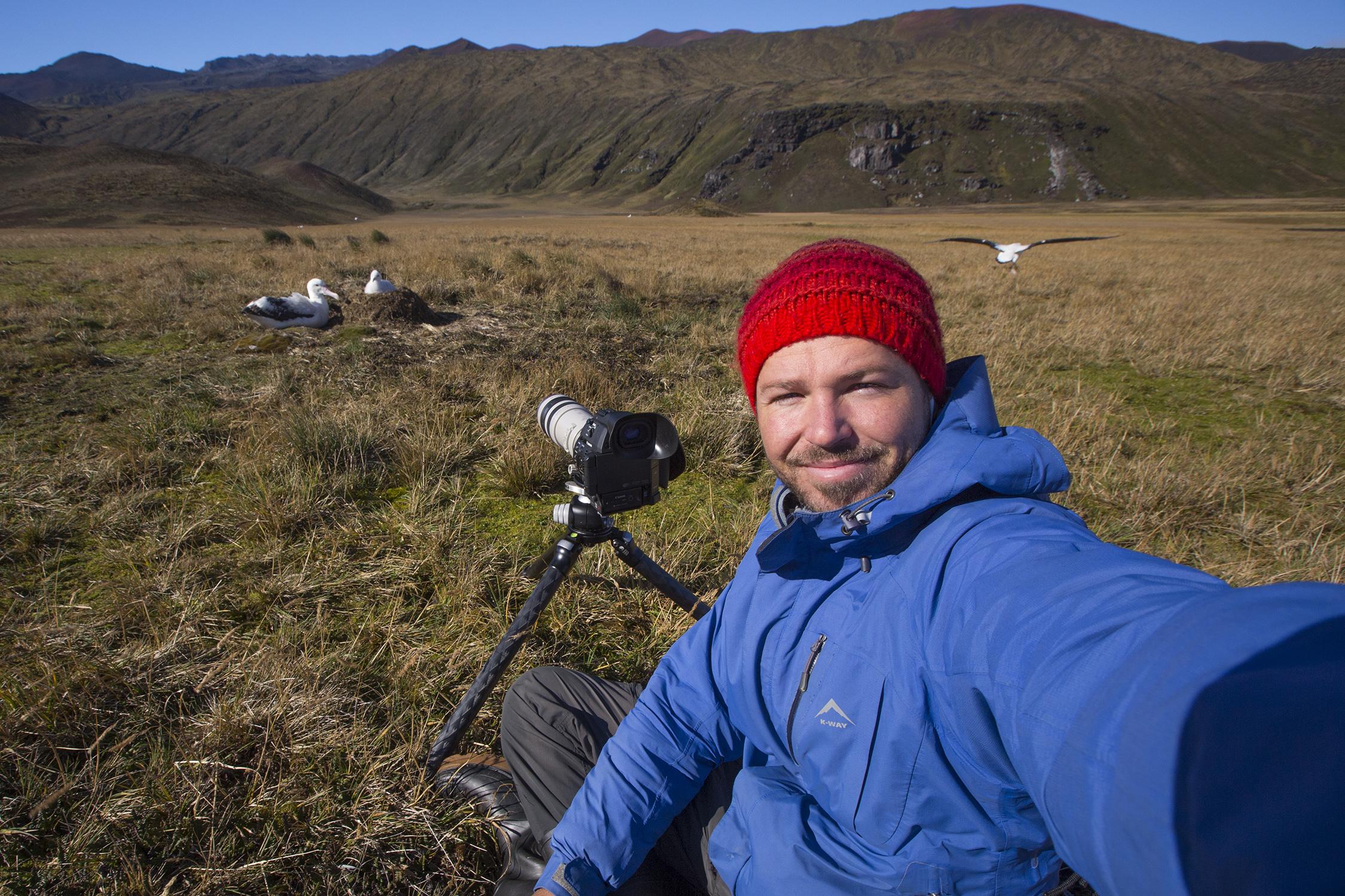 otto-whitehead-marion-island-albatross-film.jpg