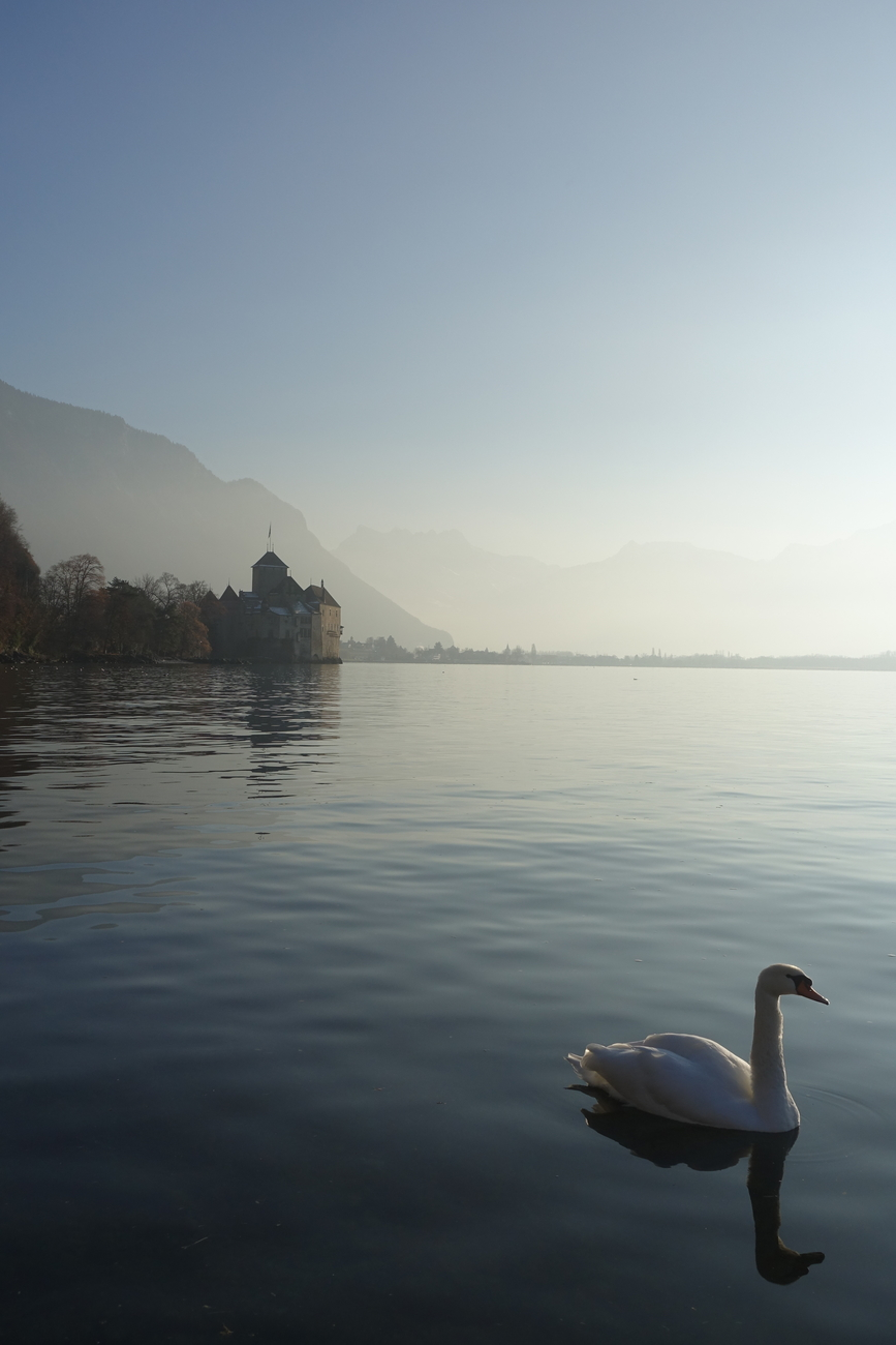 Montreux Switzerland 15.jpg
