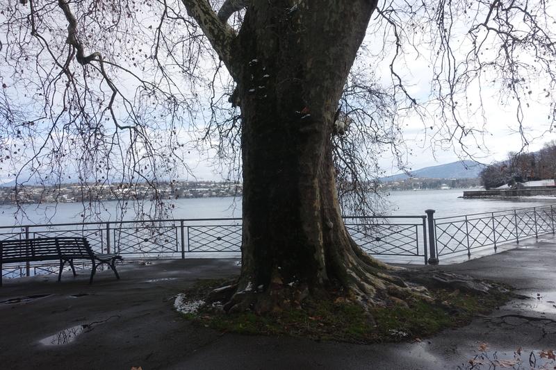 Geneva Switzerland 14.jpg