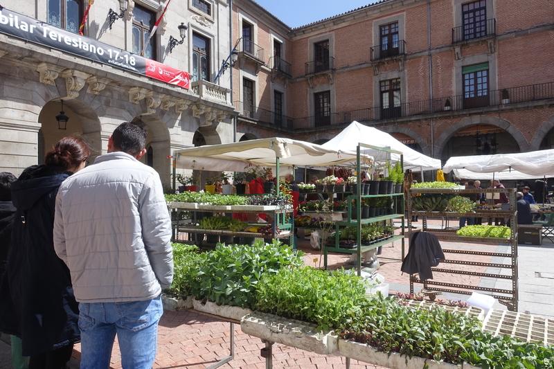 Avila Spain market 3.jpg