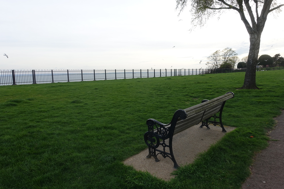 dogsitting in southend on sea england april 2018 10.jpg