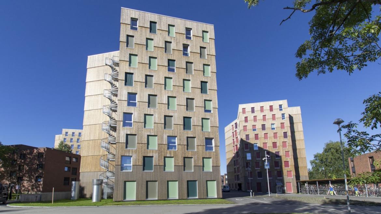 MOHOLT 50|50  STUDENTBOSTÄDER, TRONDHEIM