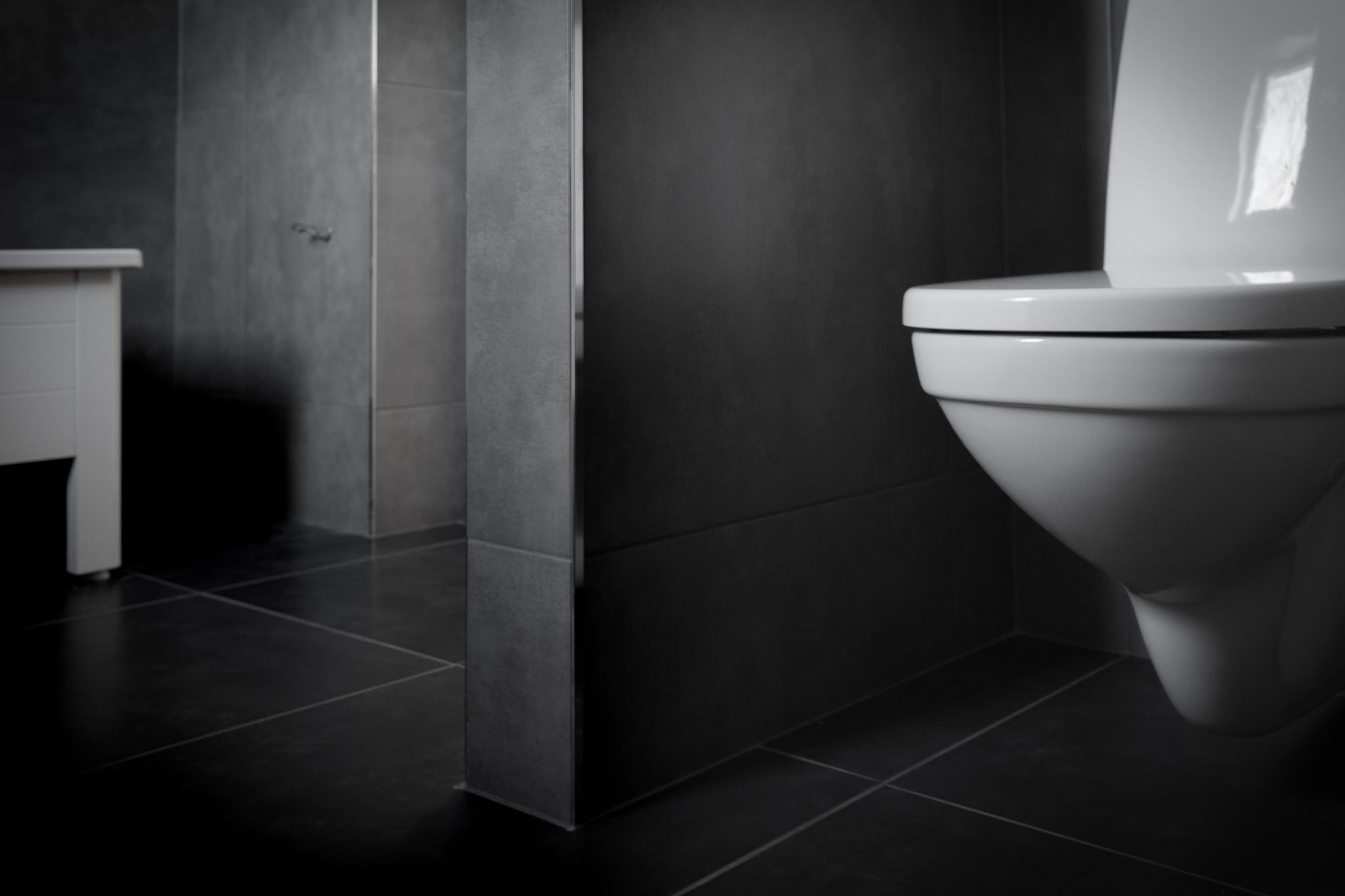 Vägghängd wc för att enkelt kunna hålla rent.  Gustavsberg Nautic 1522.
