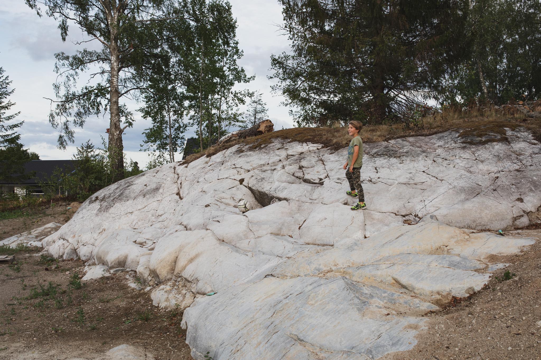 Bergpartiet rengjort från jord, mossa och rötter. Blev riktigt snyggt!