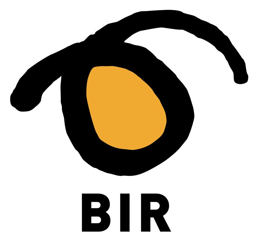 BIR1.JPG