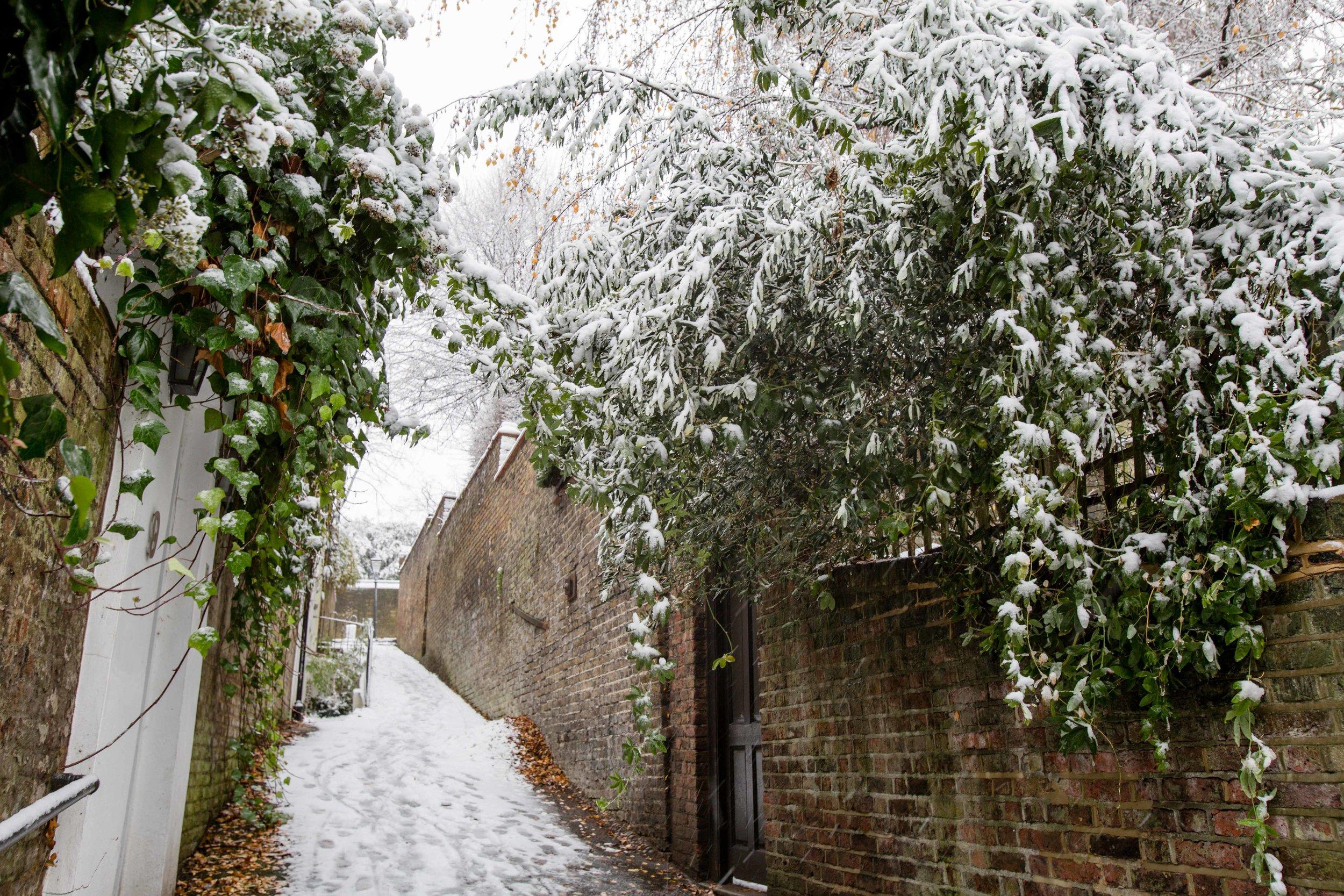 hampstead snow London 2017 Diana von r