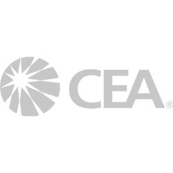 CAE_logo.jpg