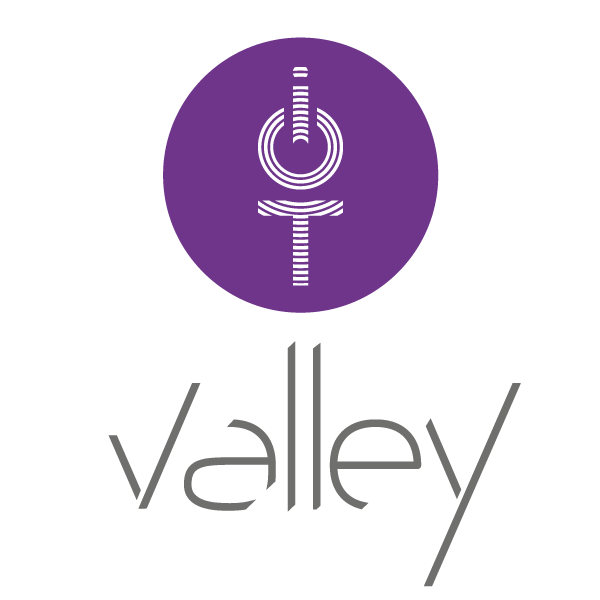 logo_iot valley_gris.png