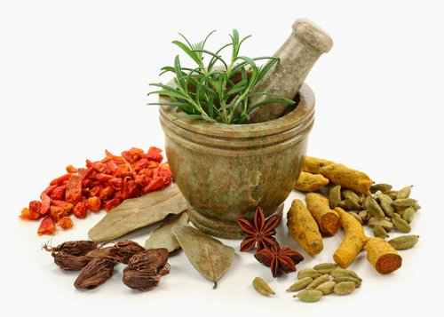 Ayurvedic medicine uses and treatment