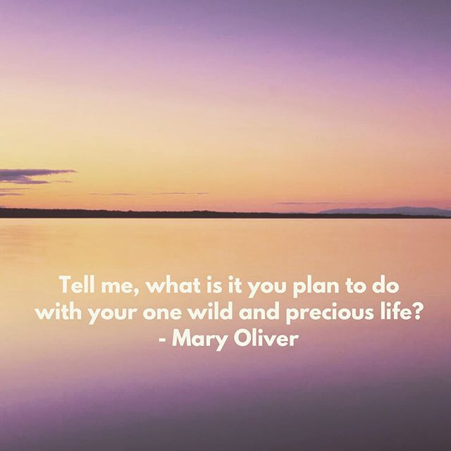 Wednesday wisdom.  #justkeepsayingit #findyourpurpose #maryoliver #spark