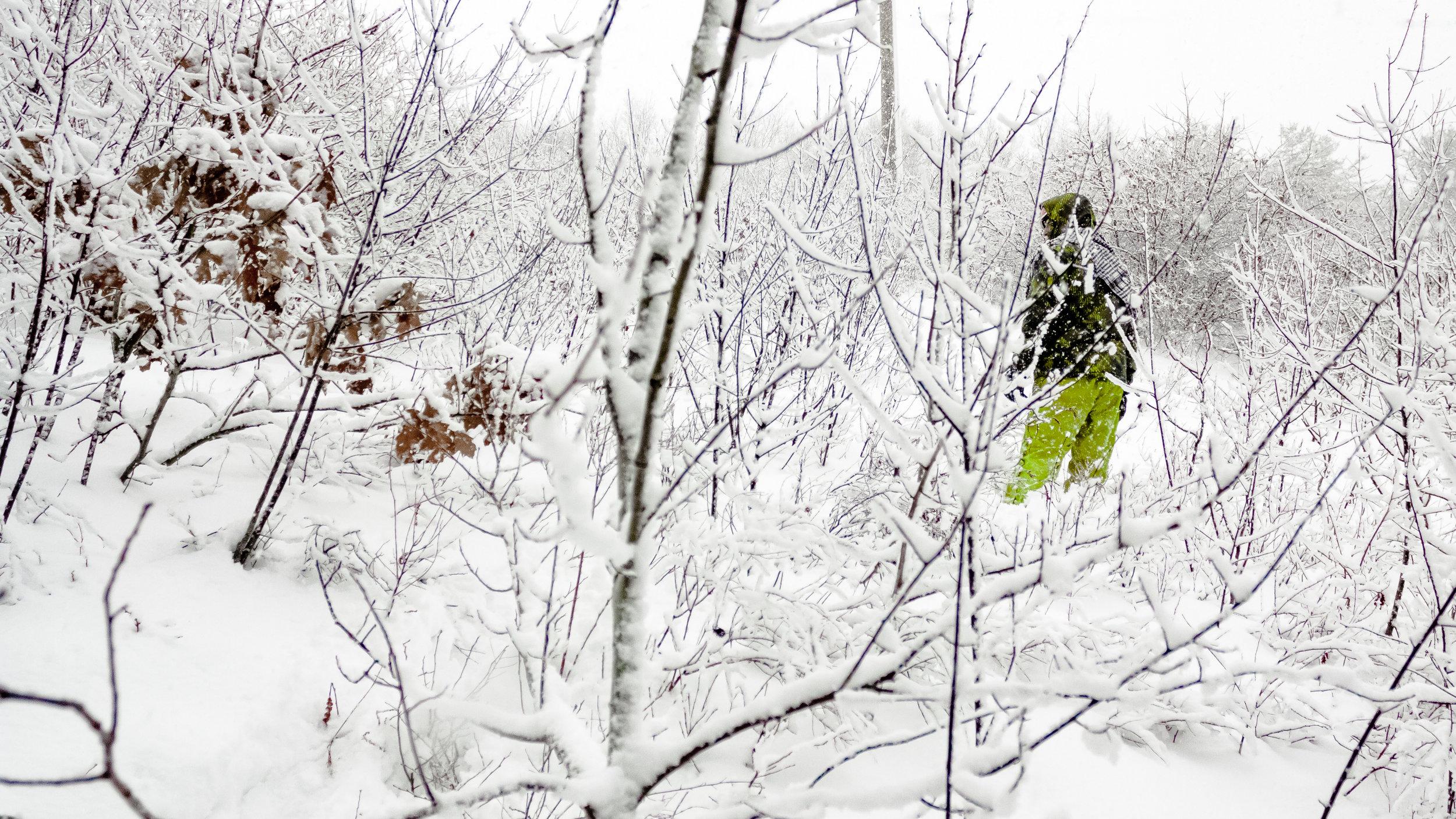 Winter Snow Shaker Glen-10.jpg