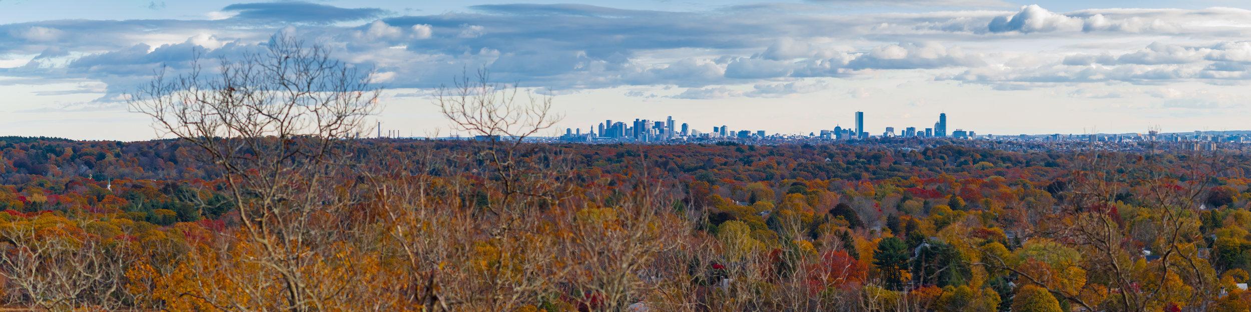 November Landscape-3.jpg