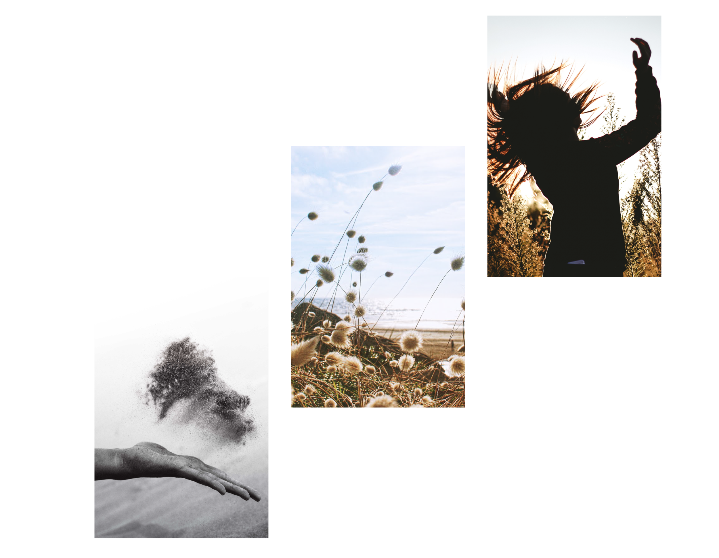 breathwork meditation-01.png