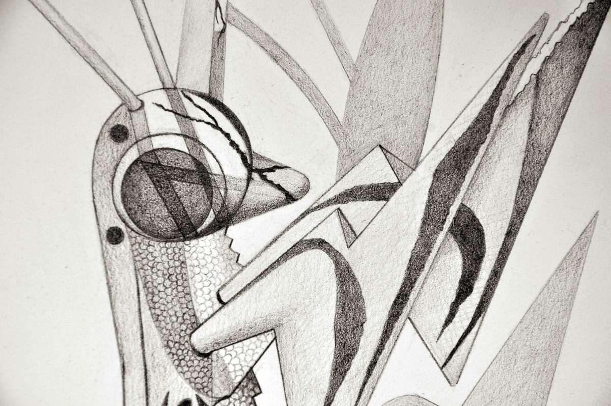 "Spirit Animal- Dragonfly (Detail)   Graphite on Paper  22"" x 30"" 2012"