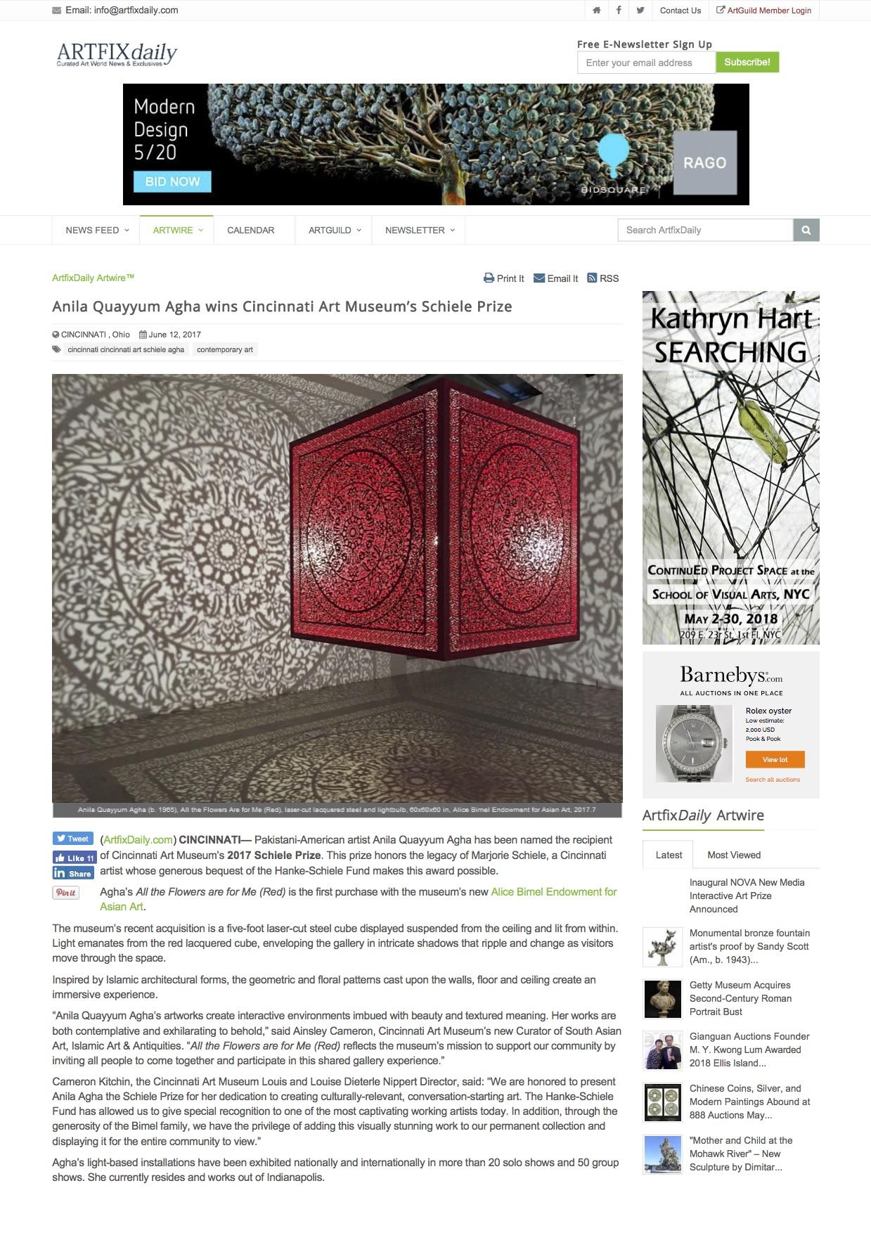anila quayyum agha wins cincinnati art museum's schiele prize - artwire press release from artfixdaily.com.jpg