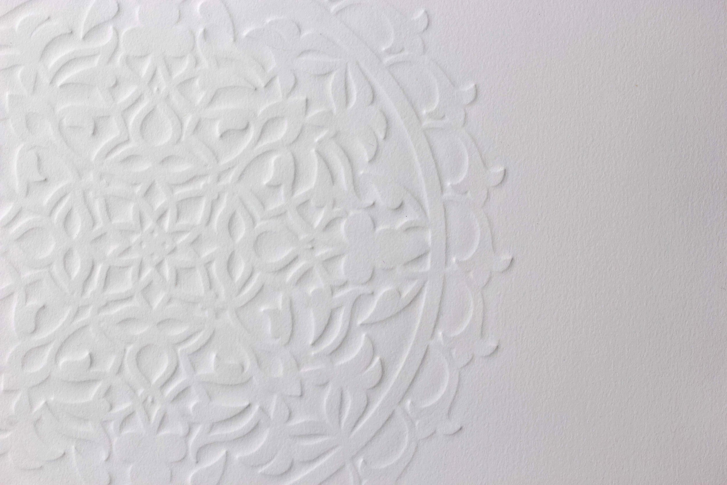 "A Hundred Leaves (Detail)   Embossed Print on Paper  29"" x 21.5"""