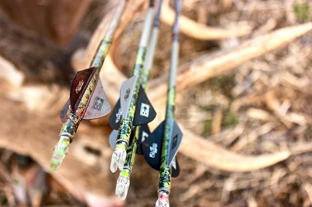 Our favorite @eastonarchery arrows are the ones that are painted red !! ⠀⠀⠀⠀⠀⠀⠀⠀ ⠀⠀⠀⠀⠀⠀⠀⠀ #finaldrawtv #bowhunting #hunting #deerhunting #whitetail