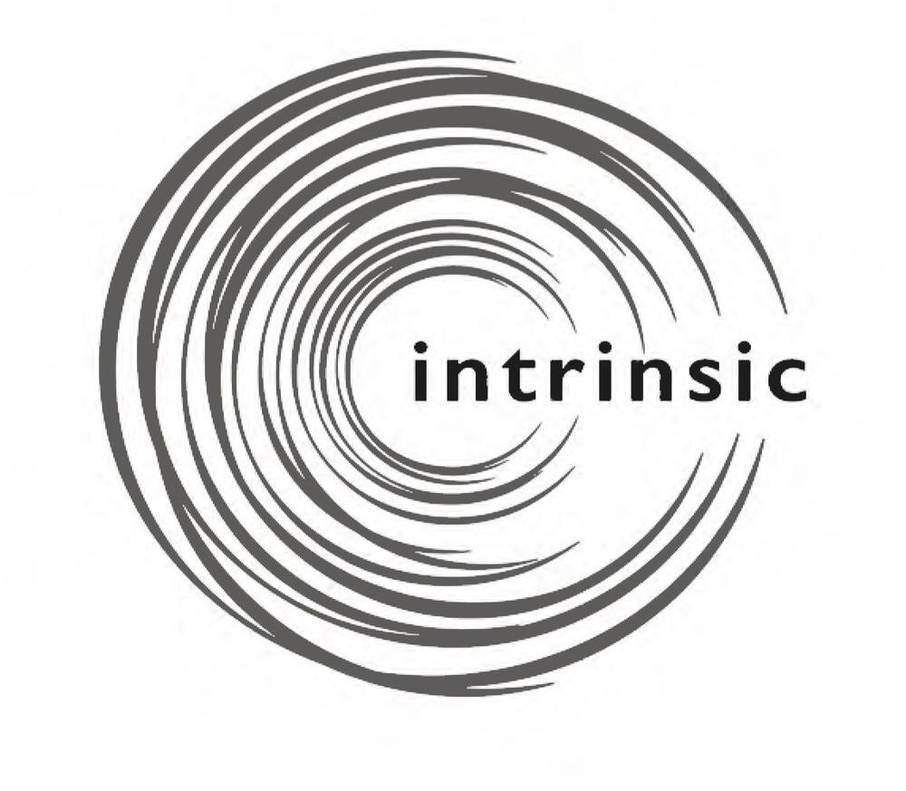 intrinsic.jpg