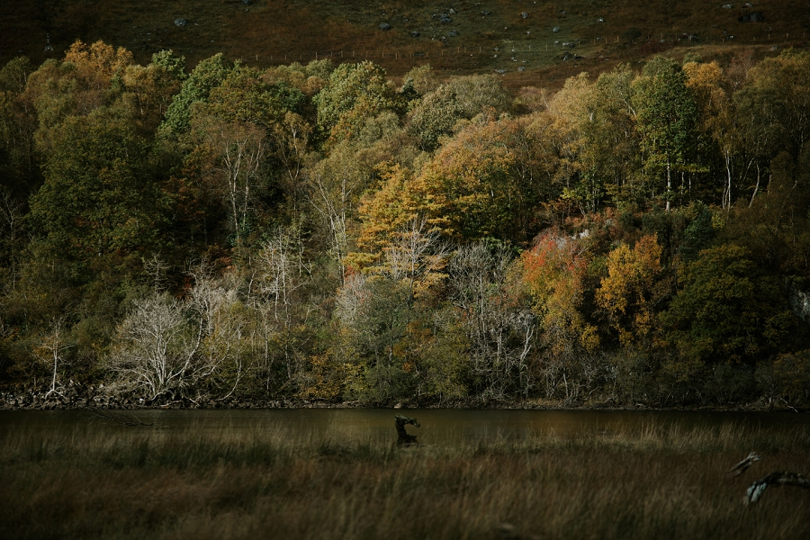 scotland-travel-photos_0357.jpg