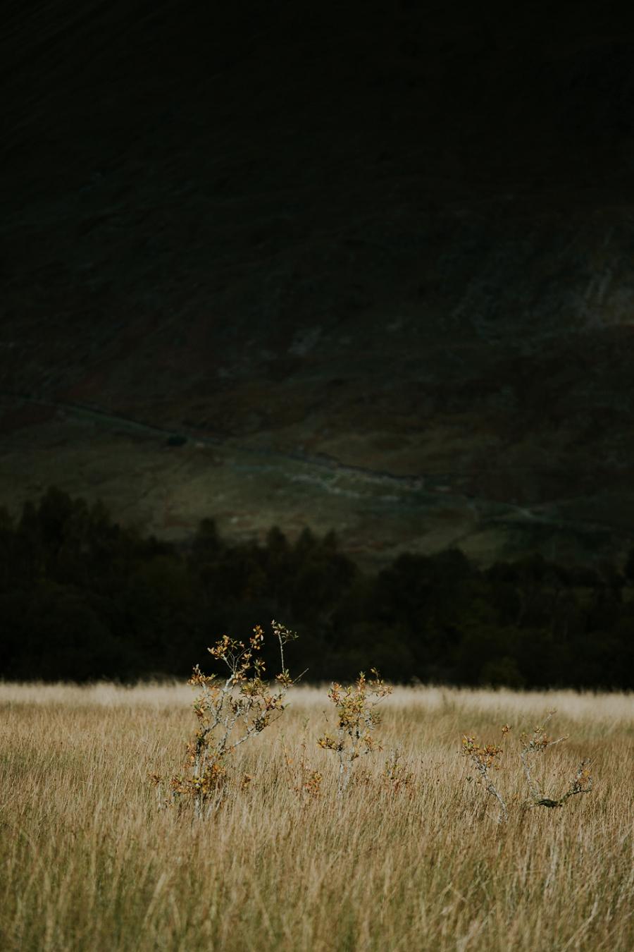scotland-travel-photography_1258.jpg
