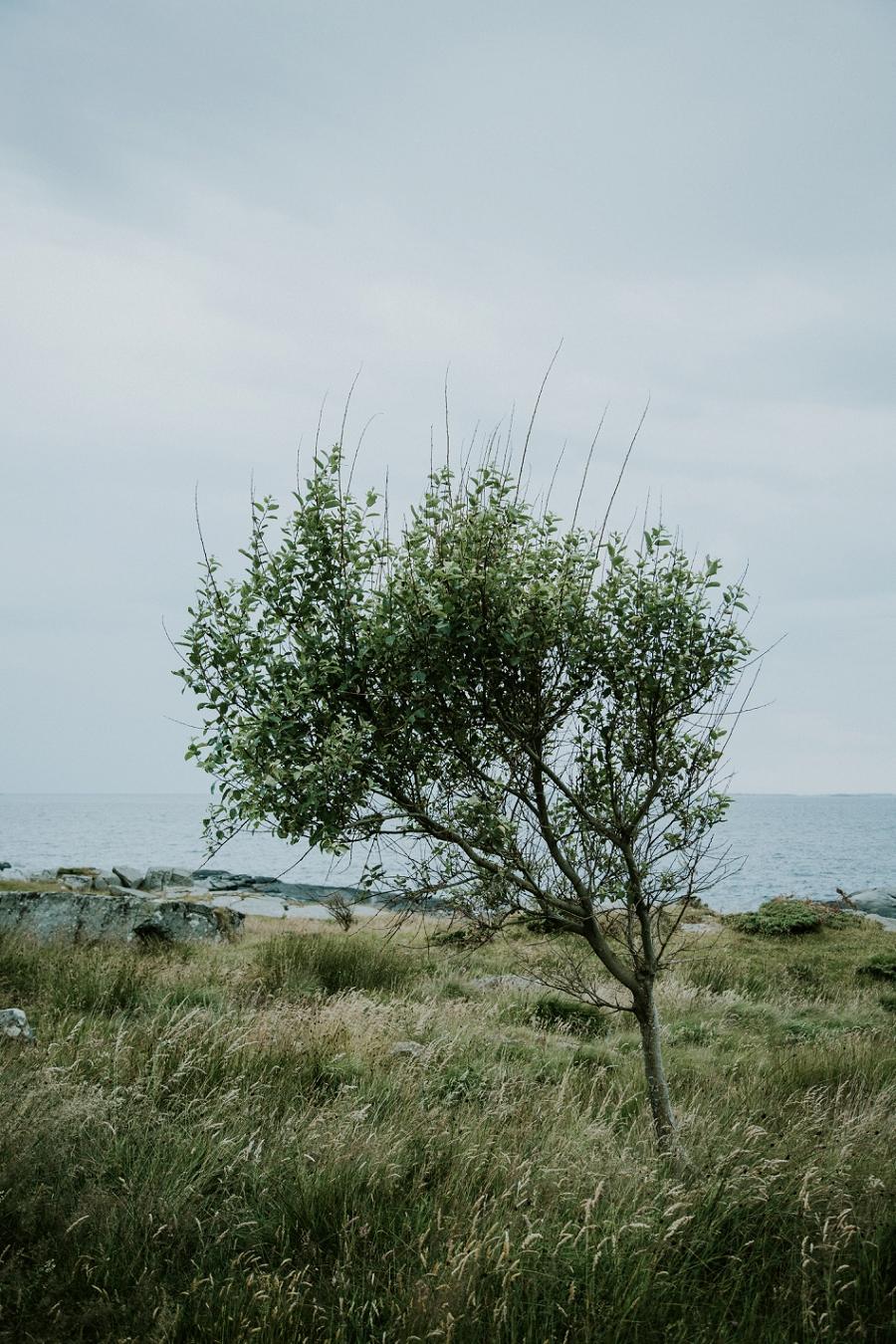 norway-travel-photography_1291.jpg