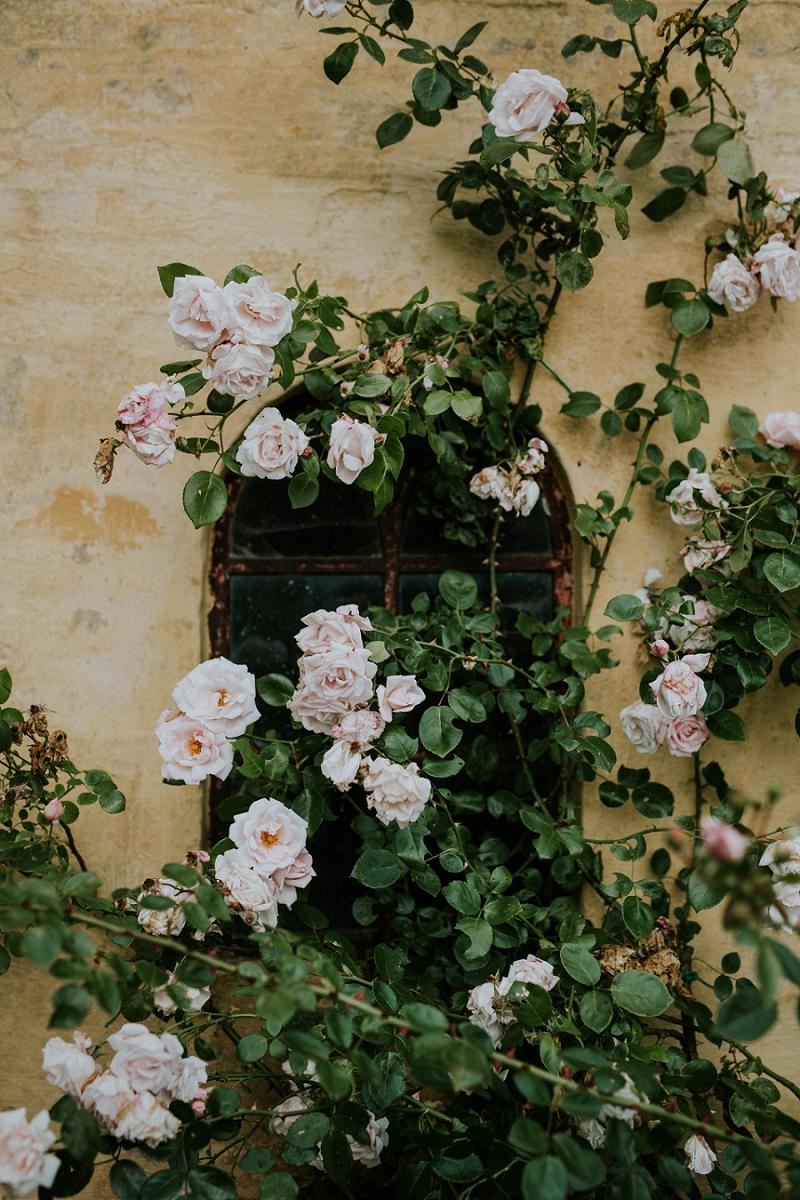 garden-photographer_1131.jpg