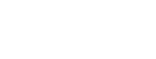 DSV_2.png
