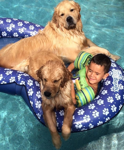 kid with dogs copy.jpg
