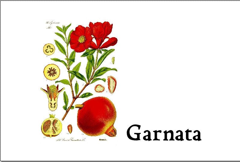 Garnata_2010_750ML.jpg