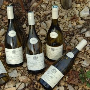 Goulley Bottles.jpg