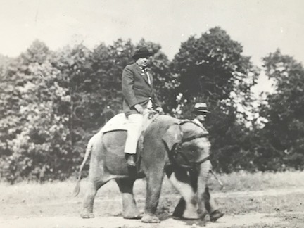 Mr. Busch riding his pet baby elephant around the grounds of his home.   photo: New York State Historical Association Library, Cooperstown, New York, Florence Ward Local History Collection