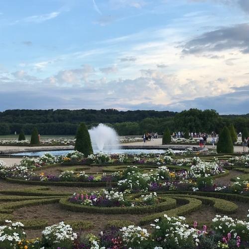 gardens twilight.jpg