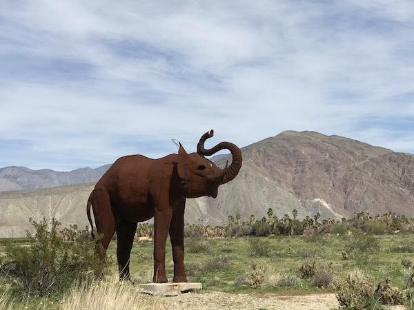 Elephant desert.jpeg
