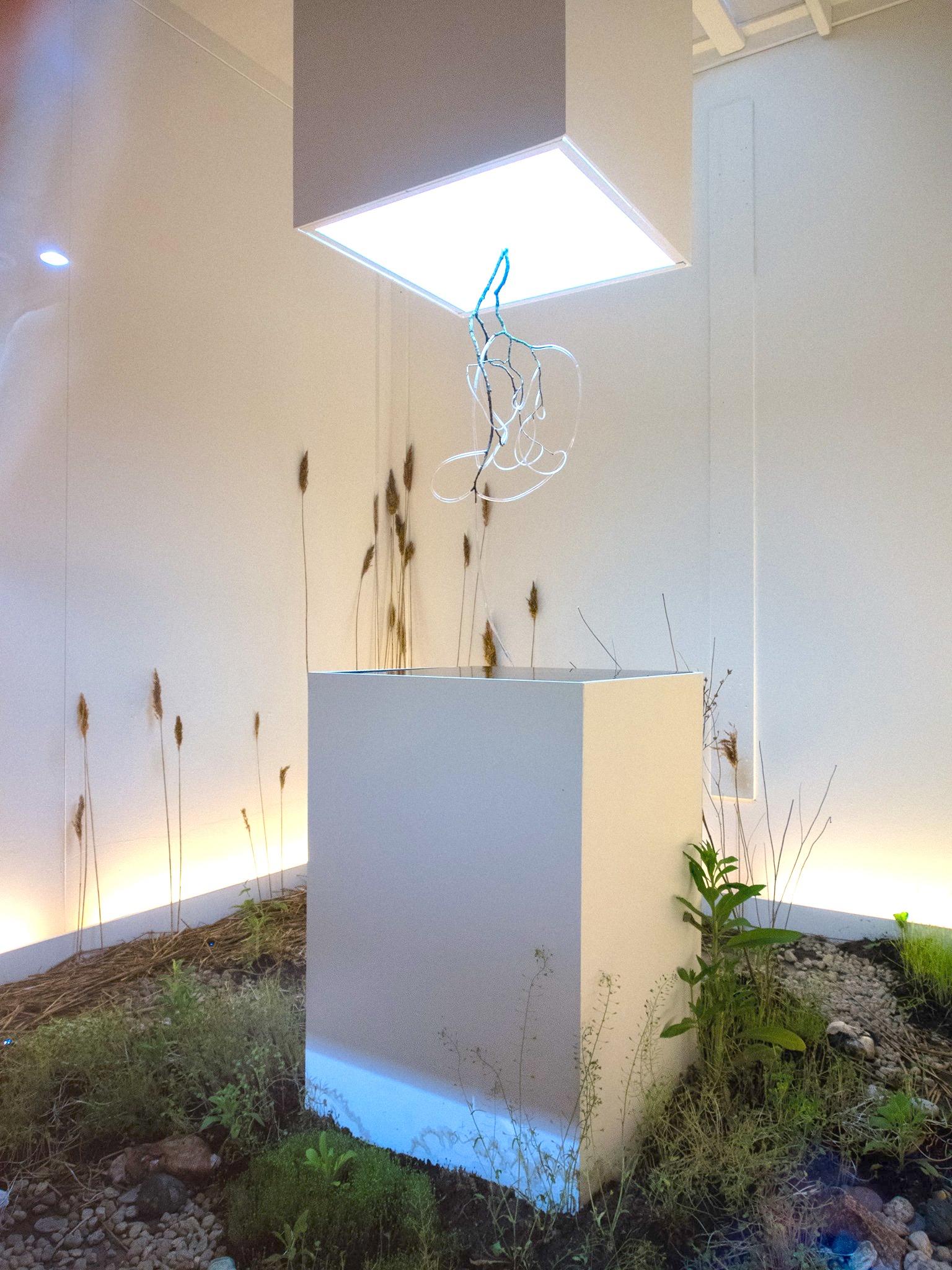 Experiment 11, 2013