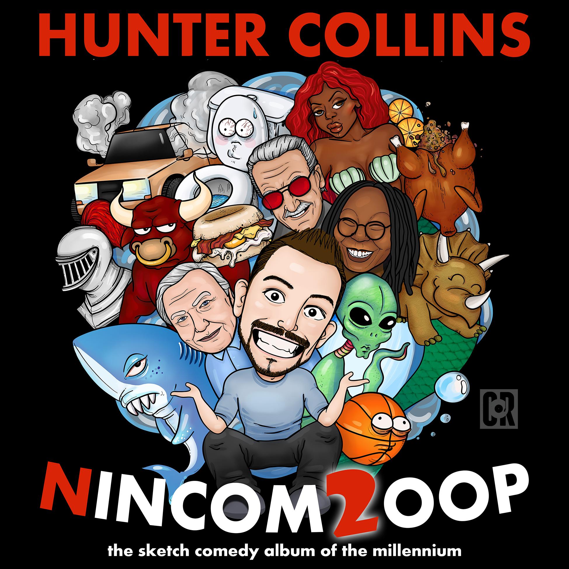Nincom2oop Cover.jpg
