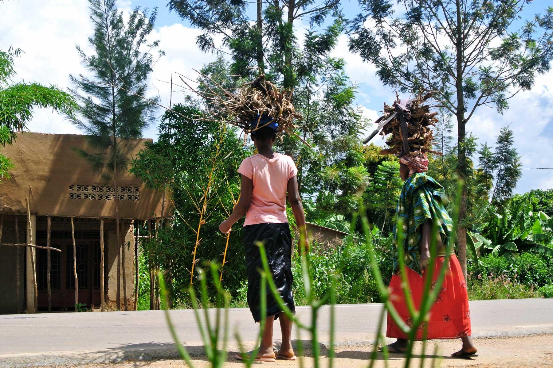 Indego Africa 2.jpg