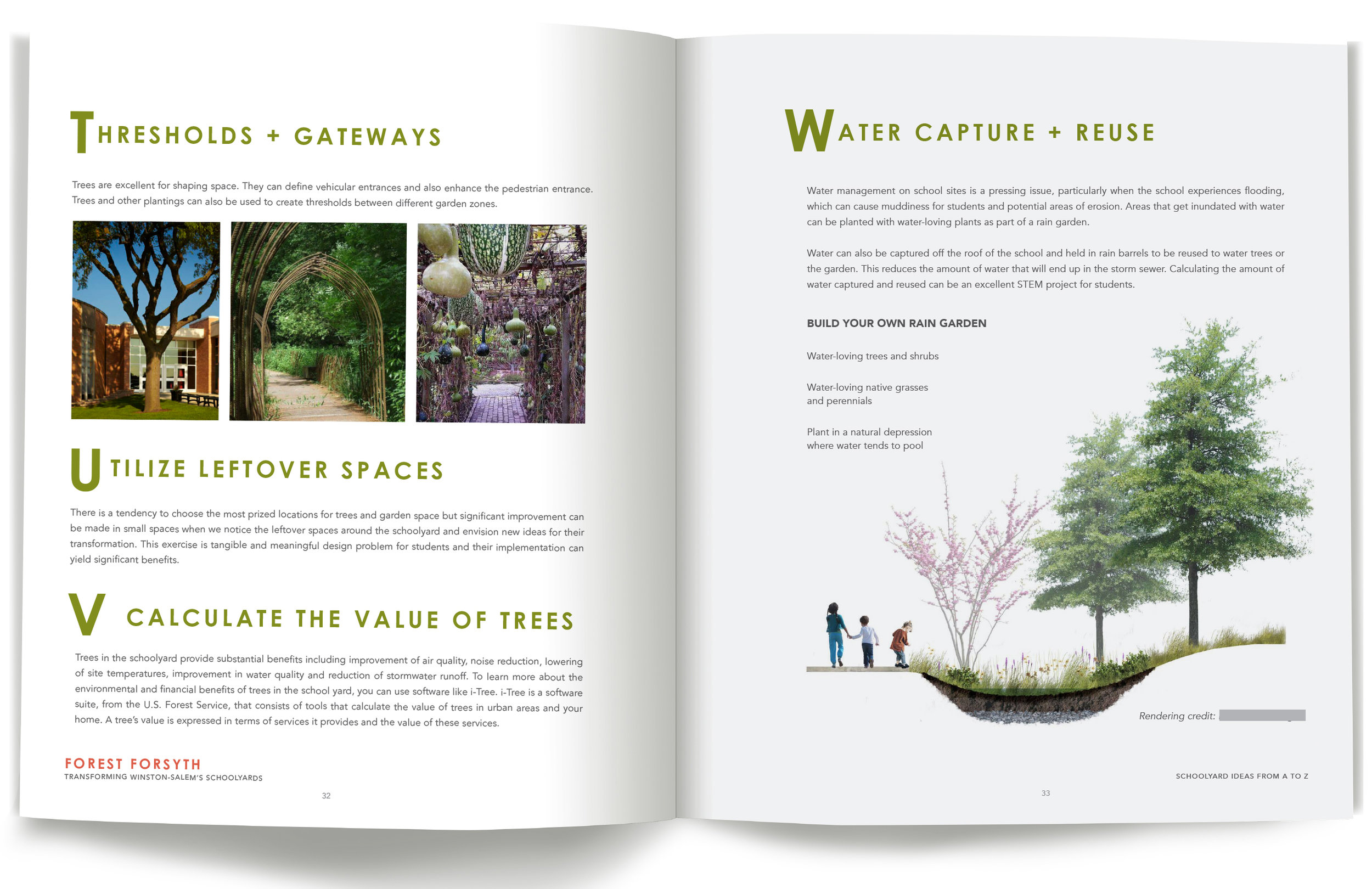 Roots_First_Design_Forest_Forsyth_10.jpg