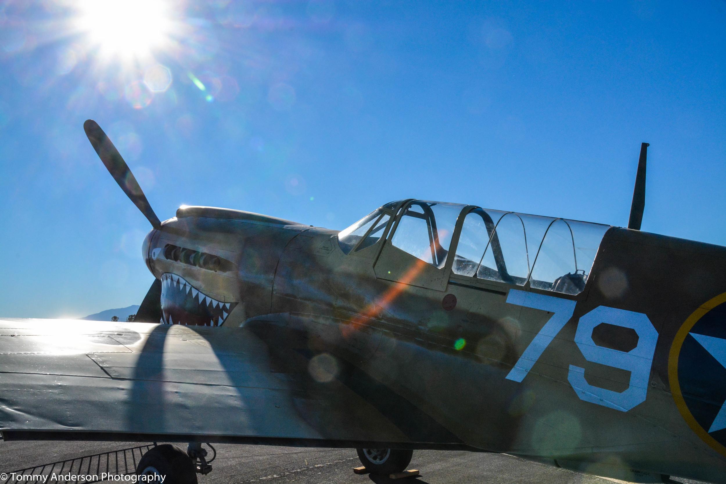 POF P-40 Warhawk, French Valley 2015 Day 2 (6).jpg