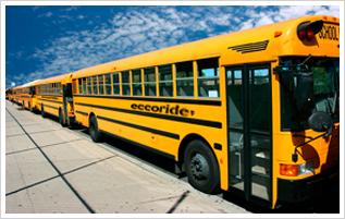 ecco ride yellow school buses