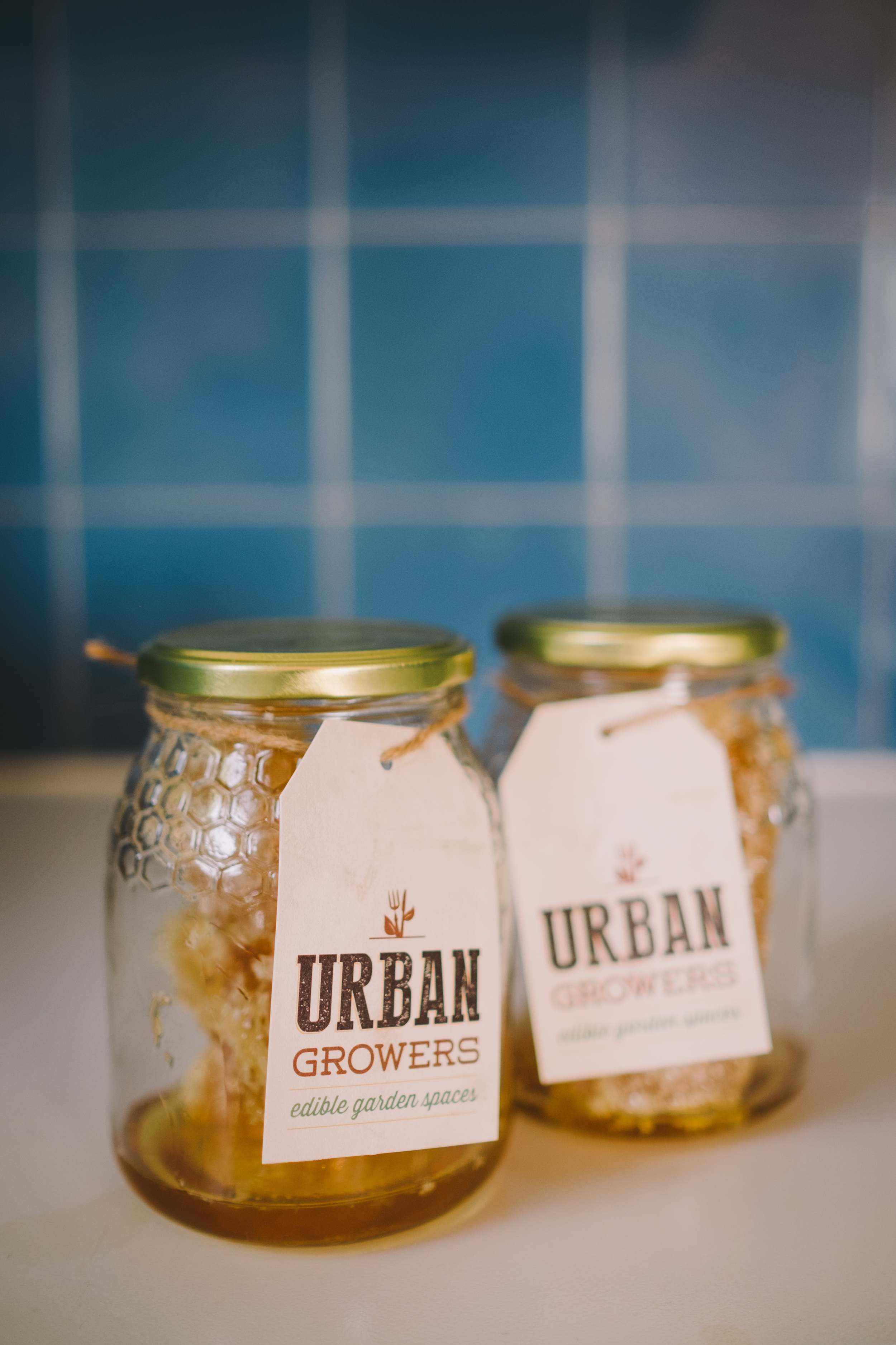 UrbanGrowers2016.03.04-008.jpg