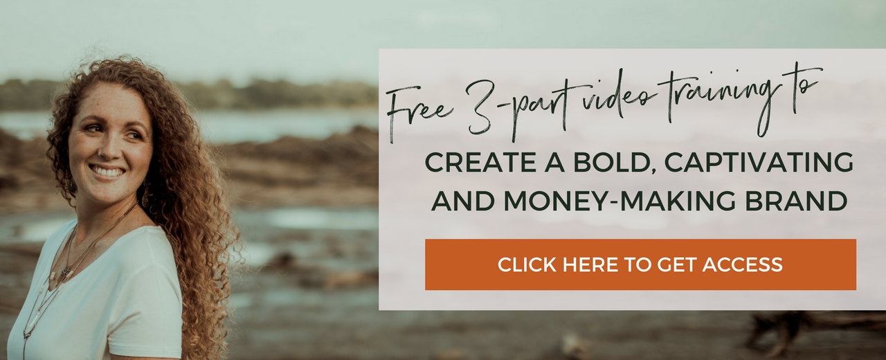3 Part Video Training on How to Create a Bold Captivating and Money-Making Brand | Branding and Business Coach | Brandmerry | Michelle Knight