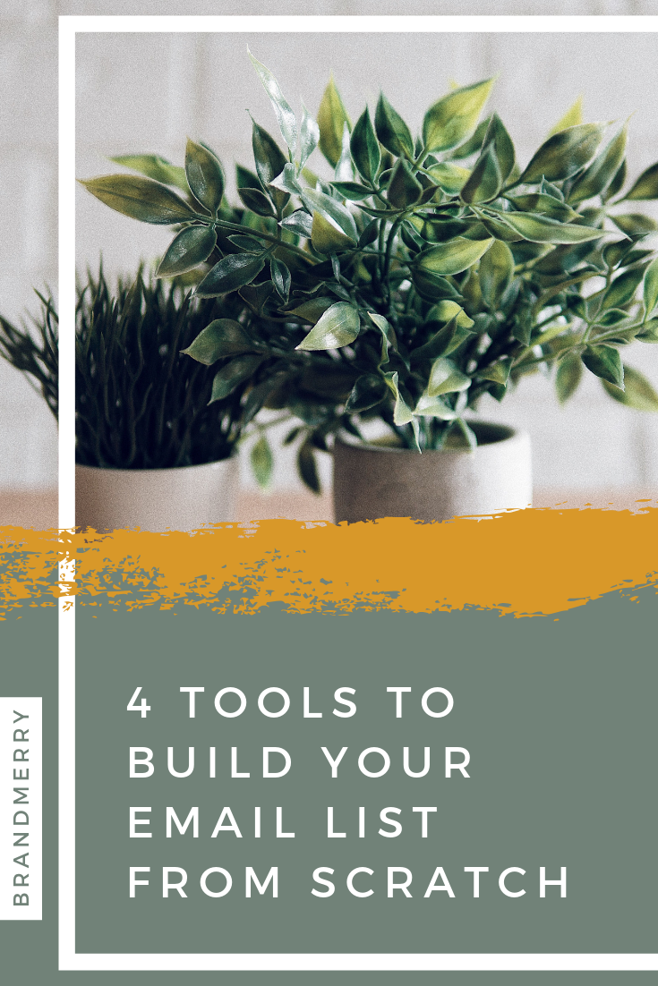 If the thought of building a community and email list has been at the front of your mind, then you're going to need to start with some key pieces - 4 to be exact. Building a community can get a bit overwhelming when you're first starting out so I'm sharing 4 tools and must-haves to get started so you can stop guessing and start doing!