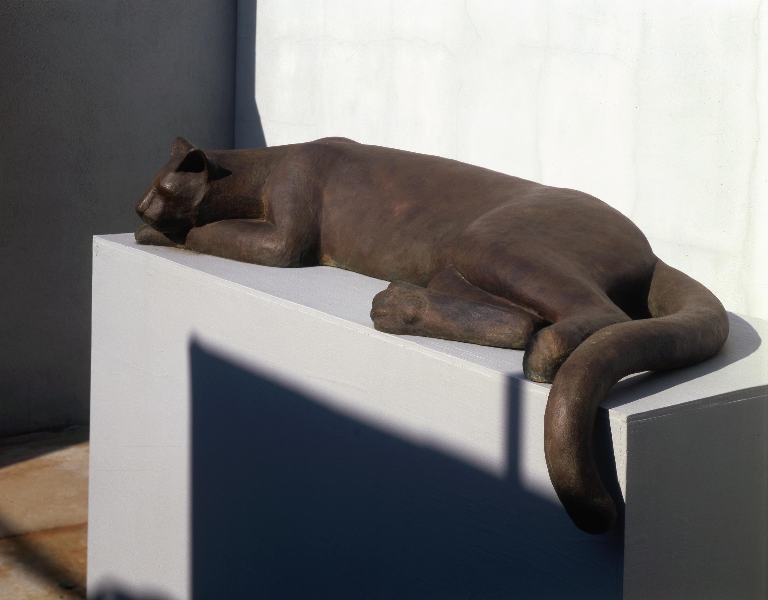 Cougar II
