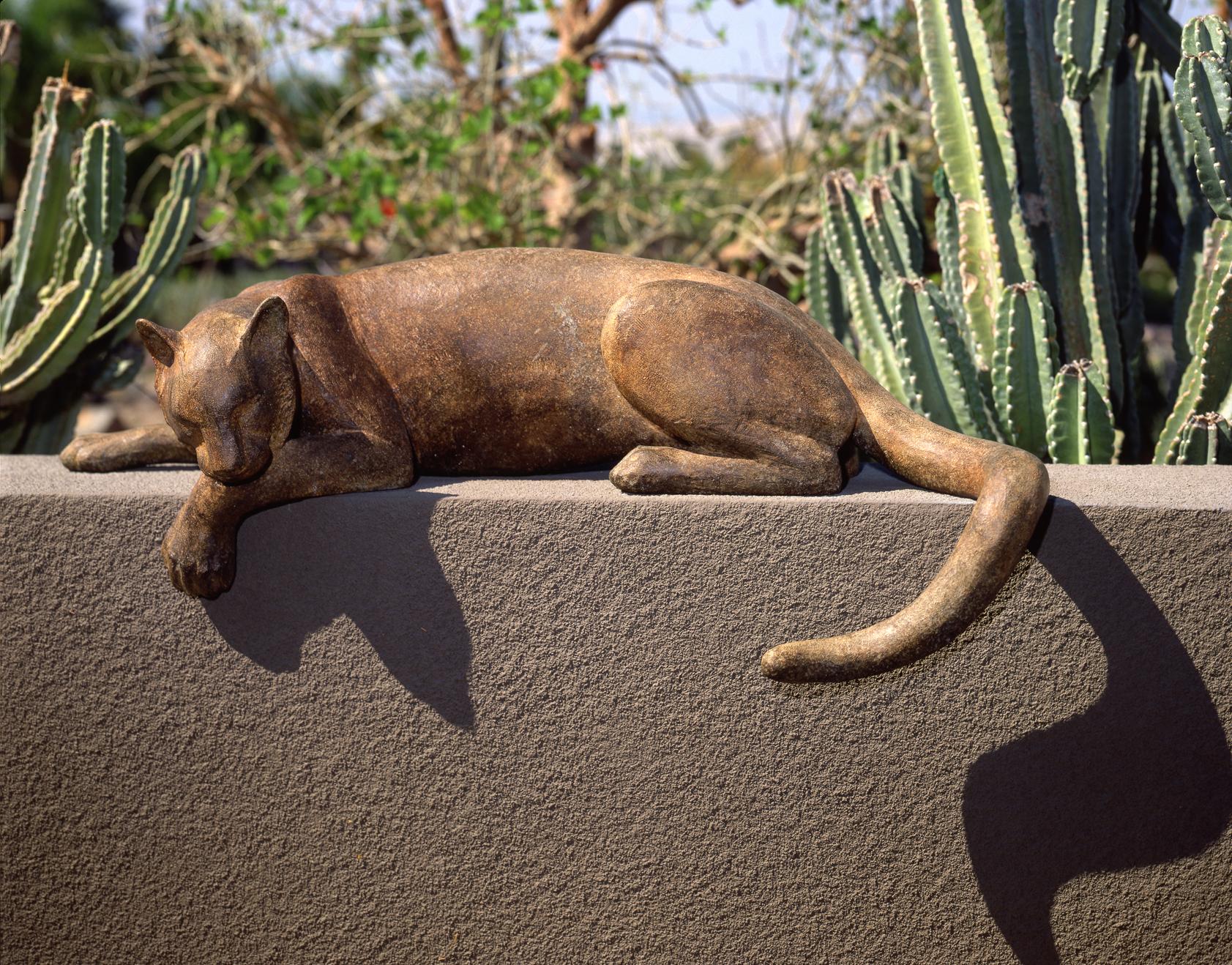 Cougar I