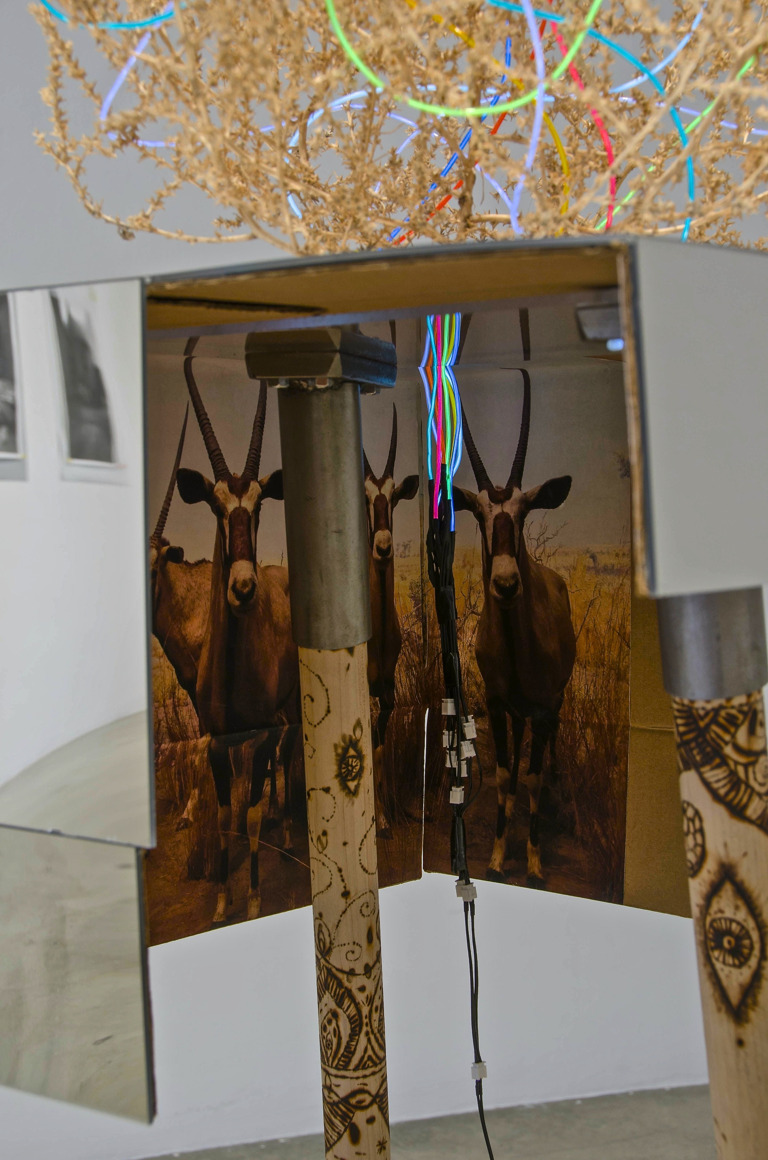 close-up, wood (wood burned), steel, cardboard, photograph, mirrored plexiglas, tumbleweed, EL wire