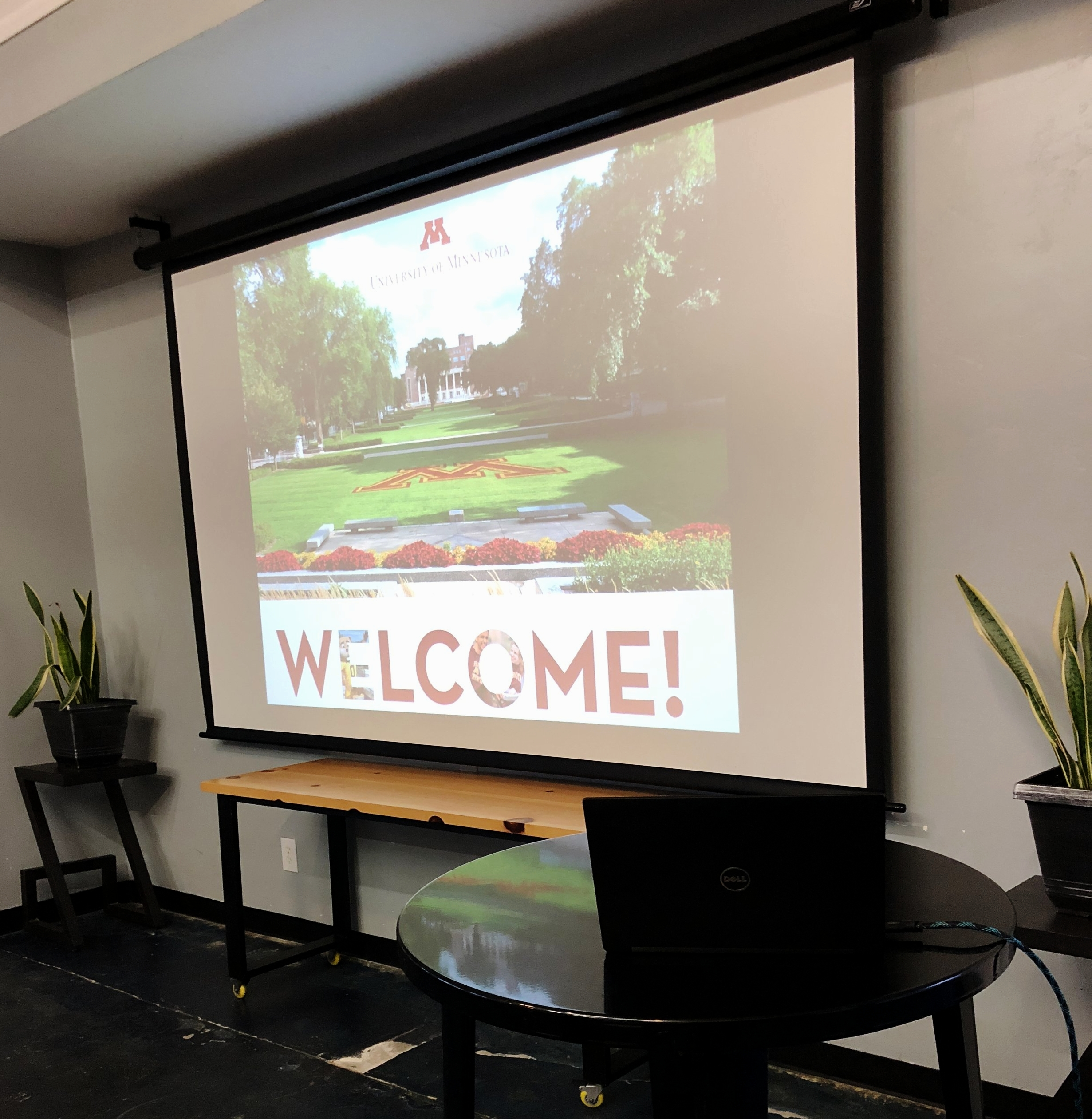 We have a large projector screen with HDMI capabilities, and seven tv screens to display your message .